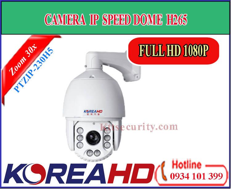 Camera IP Speed Dome KoreaHD PTZIP-230H5 | PTZIP-230H5POE